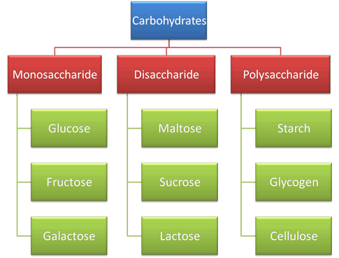 Nomenclature of carbohydrates